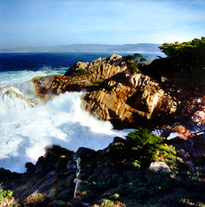 Monterey from Point Lobos