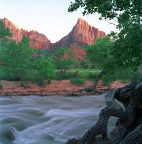 The Watchman and the Virgin River