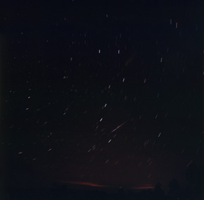 Leonid Meteor Smoke Trail