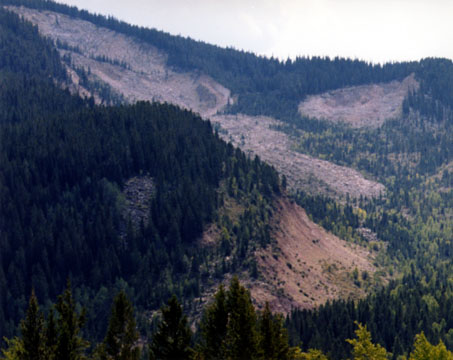 Gros Ventre Landslide Close-Up