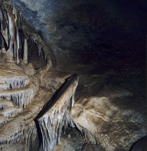 Lehman Caves Shield Formation