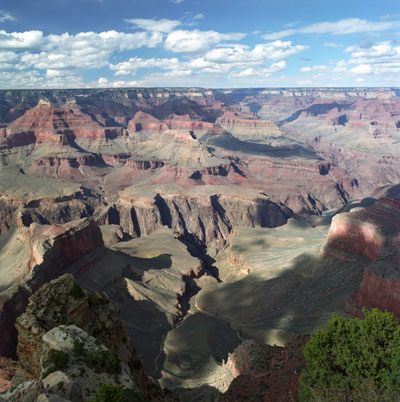 Hopi Point View
