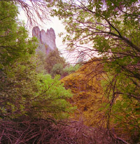 Pinnacles from Balconia Caves Trail