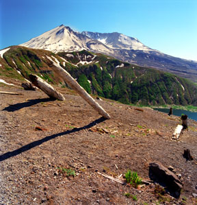 Mount St. Helens from Windy Ridge