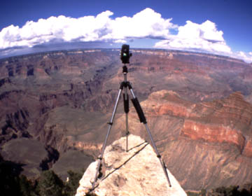 Hassy in Grand Canyon National Park, Arizona
